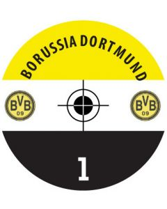 BORUSSIA D. DECALS. (24 base stickers with badge, name & numbers)