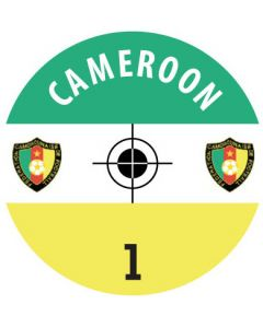 CAMEROON DECALS. (24 base stickers with badge, name & numbers)
