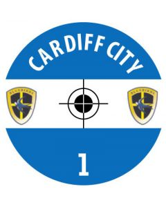 CARDIFF DECALS. (24 base stickers with badge, name & numbers)
