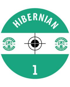HIBERNIAN DECALS. (24 base stickers with badge, name & numbers)