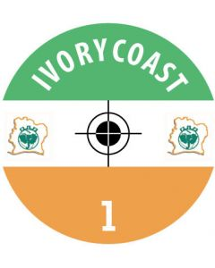 IVORY COAST DECALS. (24 base stickers with badge, name & numbers)