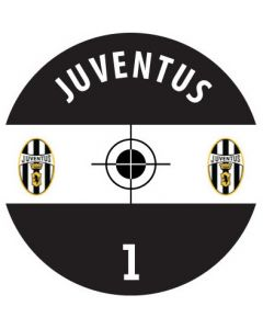 JUVENTUS DECALS. (24 base stickers with badge, name & numbers)