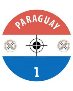 PARAGUAY DECALS. (24 base stickers with badge, name & numbers)