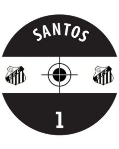SANTOS DECALS. (24 base stickers with badge, name & numbers)